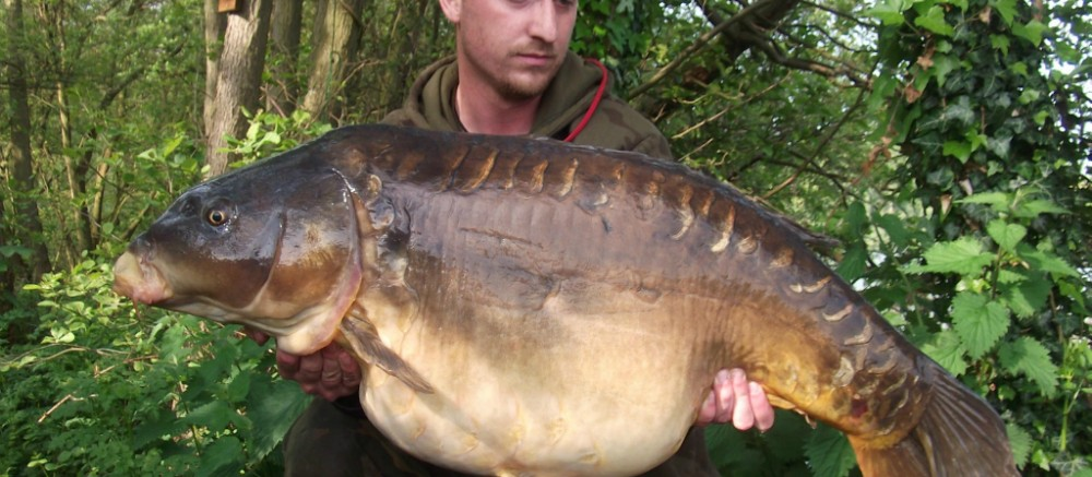19-05-12 - 37.8LB - The Big Plated