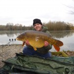 338lb-the-golden-common-march-2013