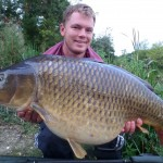 Golden Common Aug 2014